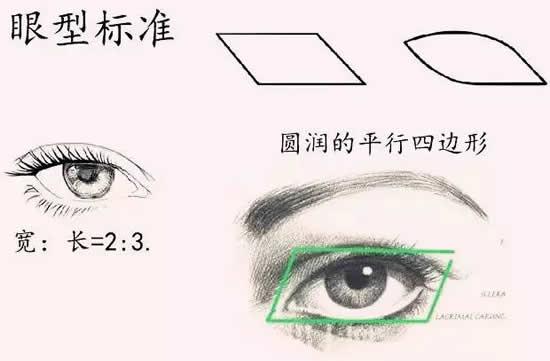 完美眼型标准